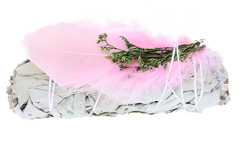 White Sage with Pink Feather 4""