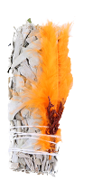 White Sage with Orange Feather